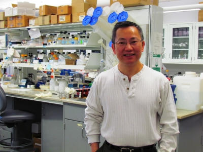 Dr. Peter Zhou's work focuses on triple-negative breast cancer, the most deadly and aggressive form of breast cancer.